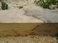 Отбеливатель возвращает древесине ее природный цвет